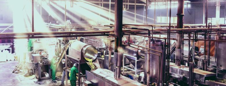 Safe Food Processing Plants